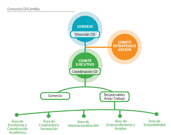 Figura de la Estructura de Gobierno del Consorcio CEI CamBio