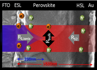 Origin and Whereabouts of Recombination in Perovskite Solar Cells