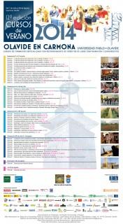 Cartel de los Cursos de Verano 2014