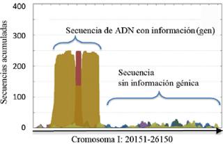 AnABlast identifica las regiones de ADN con información para codificar una proteína en base a un alto número de secuencias acumuladas. La ausencia de acúmulo es indicativo de una región entre genes, que no codifica proteínas.