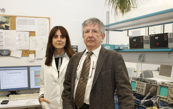 Agnés Gruart y José María Delgado, Division of Neuroscience at Universidad Pablo de Olavide.