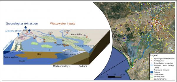Humedales de Doñana y principales amenazas asociadas