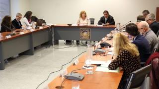 Amparo Rubiales y Vicente Guzmán en el Consejo Social que ha aprobado el Presupuesto 2018