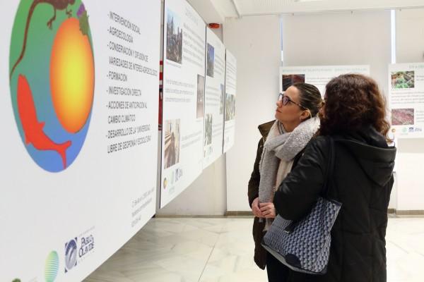 'Agua, Paisaje y Territorio' podrá visitarse hasta el 13 de abril