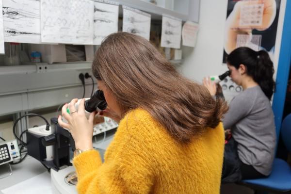 Los estudiantes han tenido la oportunidad de participar en talleres y conocer de primera mano el trabajo del personal investigador.