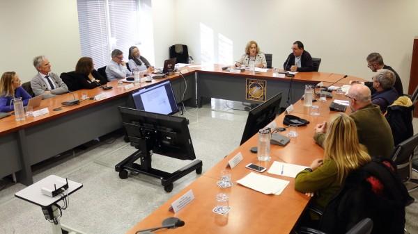 Amparo Rubiales y Vicente Guzmán presiden la sesión del Consejo Social