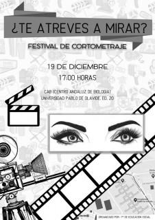 Festival_cortos