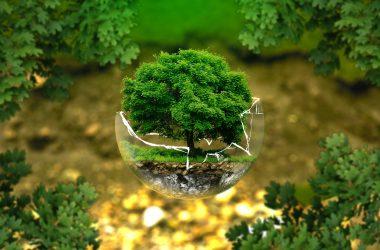 ilustración sobre protección medioambiental