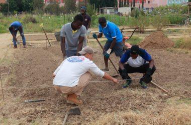 los jóvenes durante sus prácticas en el huerto ecológico