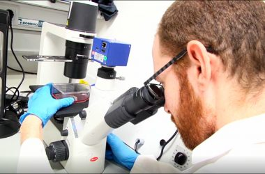 investigador observa a través de un microscopio