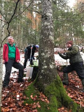 Extracción de testigos de madera con barrena forestal para análisis dendrocronológicos. A la izquierda Dr. J. Julio Camarero, a la derecha. Dr. Raúl Sánchez-Salguero.