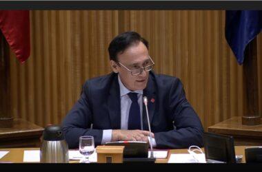 José Carlos Gómez Villamandos comparece ante la Comisión para la Reconstrucción Social y Económica del Congreso de los Diputados