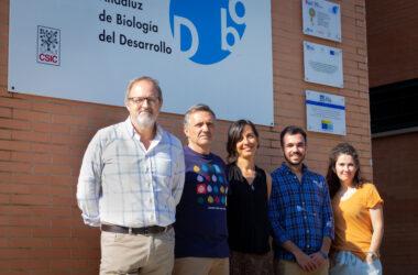 Guillermo López-Lluch, Carlos Santos, María Victoria Cascajo, Juan Diego Hernández y Ana Sánchez Cuesta en el CABD