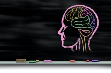 cerebri dibujado en una pizarra: ilustración sobre el aprendizaje y la neurociencia