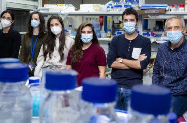 Desde la izquierda: Silvia Salas, Ana Sánchez, María Expósito, Paula Monterrubio, Gabriel Ruiz y Rafael R. Daga en su laboratorio del CABD