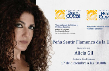 Encuentro con Alicia Gil, 17 de diciembre a las 18 horas
