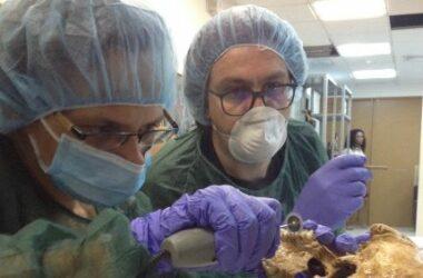 Corina Knipper (CEZA) y Alesssandro Achilli (Pavía) trabajan con restos de individuos de los periodos pre-hispánicos y colonial temprano conservados en el Patronato Panamá Viejo