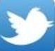Twitter IJERI